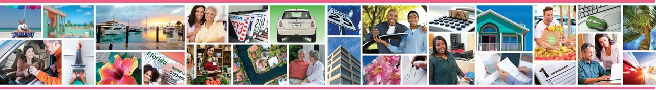 Palm Beach County Tax Collector Images Collage