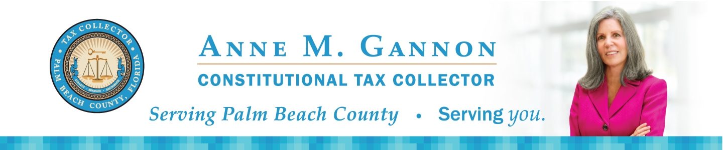 Website Banner with Palm Beach County Seal and Photo of Anne Gannon
